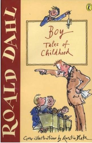 essay questions on boy by roald dahl