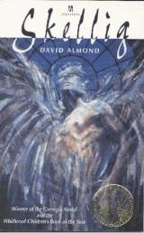 Review: Skellig – DavidAlmond.